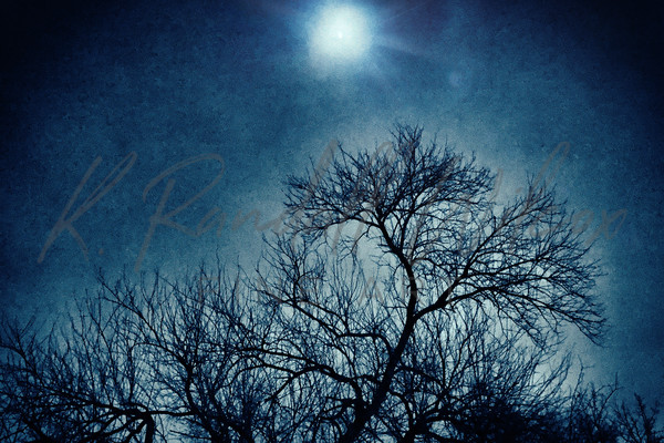 Winter Moon Art | K. Randall Wilcox Fine Art