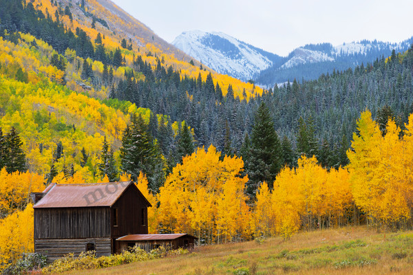 Mountain Light Images, Ashcroft Colorado Fall colors peak cabin mining trees aspen snow