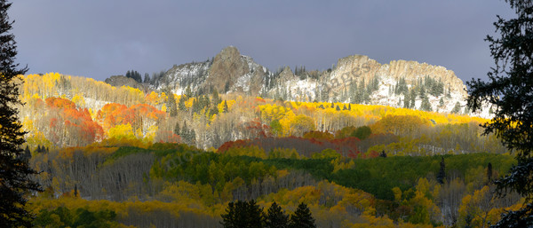 Mountain Light Images, mixed fall colors kebler pass crested butte aspen, trees, mountains,