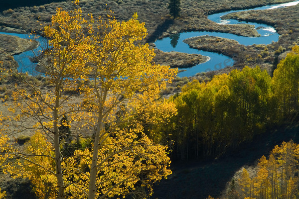 mountain light images fall in east creek outside of crested butte colorado the creek below meanders around in the gothic valley