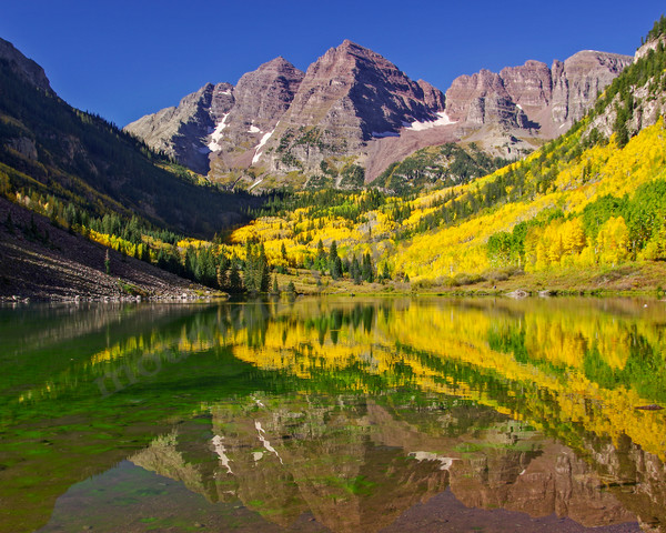 mountain light images maroon lake and the famous maroon bells glow in mid morning light. fall aspen leaf yellows golds and lime greens create a palette of color enhanced by the deep blue of the colorado sky