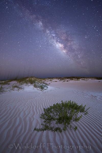 Starlit Beach Fine art Photo | Waldorff Photography