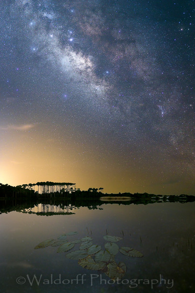 Western Lake under the Stars | Taken at Grayton Beach along Hwy 30A in Florida  | Fine Art Prints on Canvas, Paper, Metal, & More | Waldorff Photography