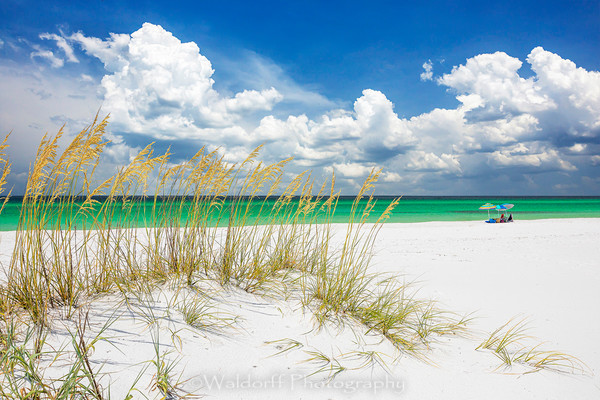 Sea Oats and Beach Umbrella | Destin, Florida | Fine Art Landscape Photography on Canvas, Paper, Metal | Photography by Jeff Waldorff