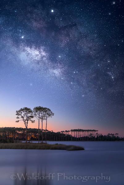 Stars of Western Lake