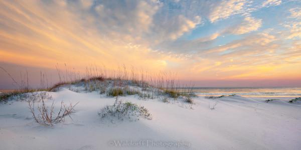Sand Dune Sunrise| Gulf Islands National Seahsore, Florida | Fine Art Prints on Canvas, Paper, Metal, & More | Waldorff Photography