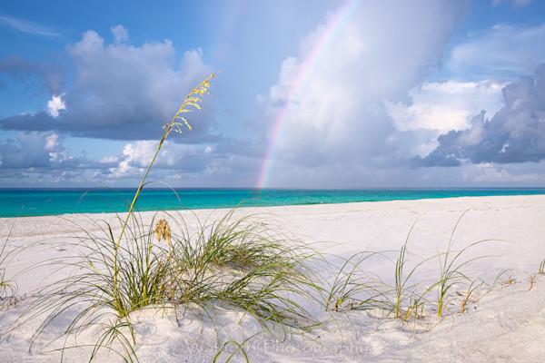 Catching Rainbows (20 Bc) Photography Art | Waldorff Photography