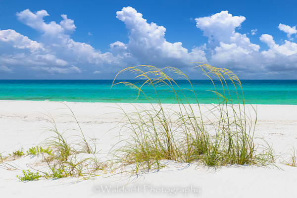 Sea Breeze Photography Art | Waldorff Photography
