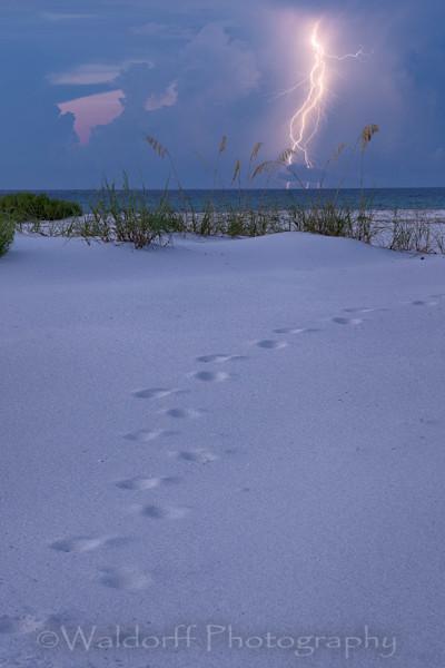Lightning Dance Photography Art | Waldorff Photography