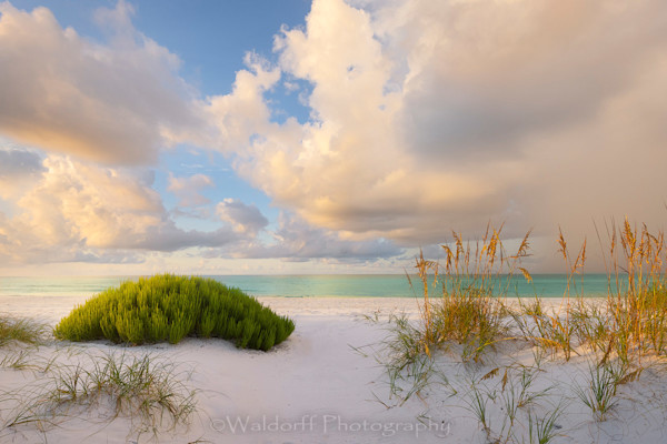 All Things Emerald Coast | Gulf Islands National Seashore, Florida  | Fine Art Landscape Photography on Canvas, Paper, Metal, Acrylic | Photography by Jeff Waldorff