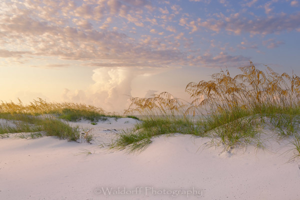 Dust In The Light Photography Art | Waldorff Photography