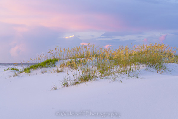 Pastel Dunes Photography Art | Waldorff Photography