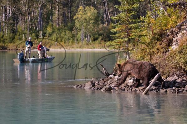 Alaska  5969 Edit Output Art | dougbusby