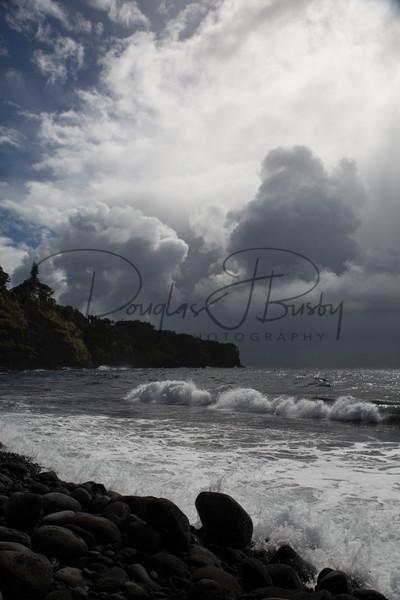 Maui 8932 Art | dougbusby