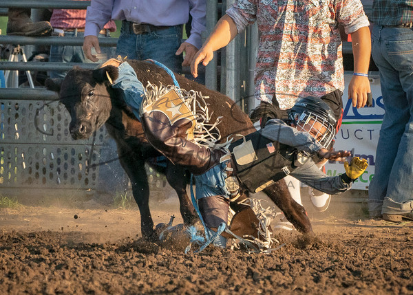 Dakota Bronc Sisk Rodeo 4887 Edit Edit Output Art | dougbusby