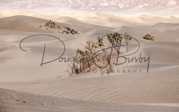 Sw Death Valley 0438 Edit Art | dougbusby