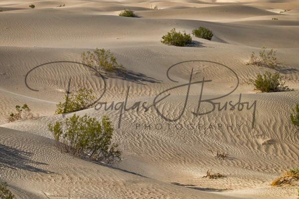 Sw Death Valley 0519 Edit Art | dougbusby