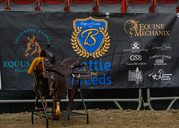 Battle of the Breeds   Equifest 2020
