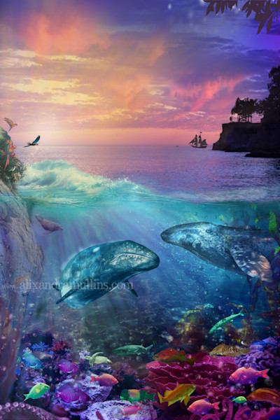 Ocean Seascapes