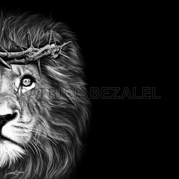Own Limited Edition Hand-drawn Art Crown of Thorns-Lion | Patrick Bezalel Fine Artist