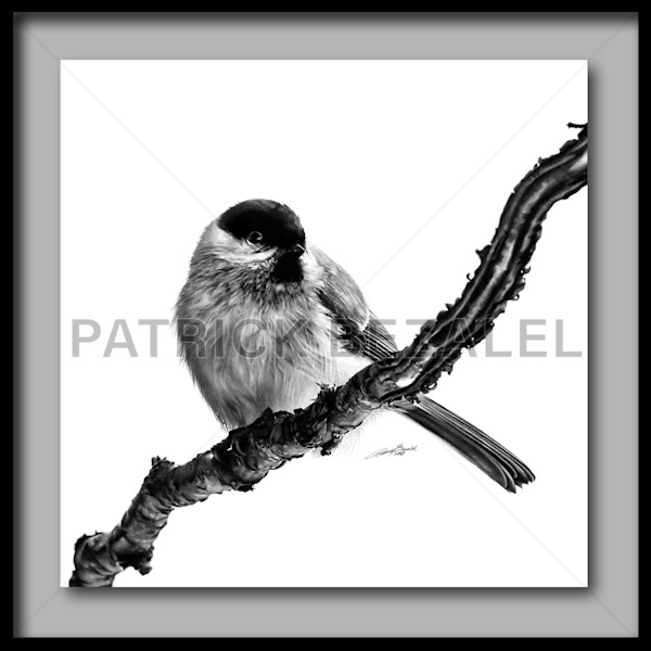 Birds Of The Air (Fine Art Print With Frame) - Prices in US$