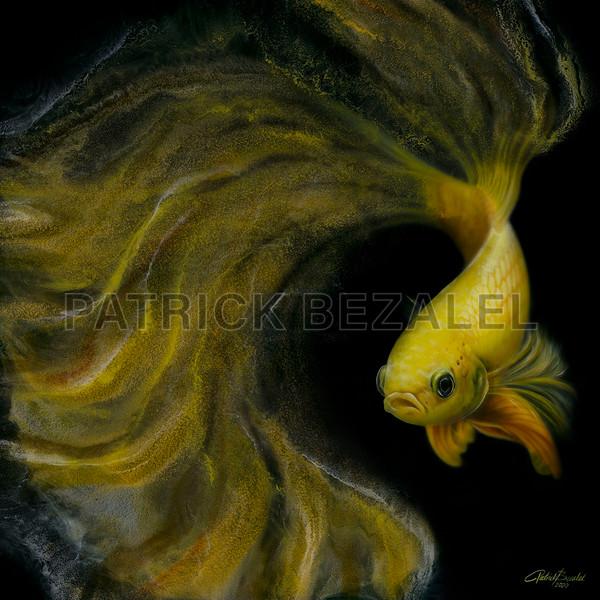 Betta Fish Yellow (Diasec™ Print)  Art | Patrick Bezalel Pte Ltd