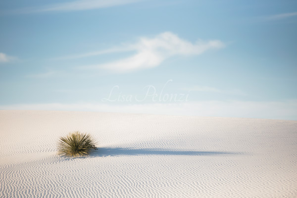 Wispy Clouds At White Sands Photography Art | lisa pelonzi photographer