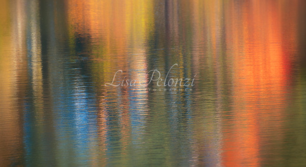 Fall Reflections  Photography Art | lisa pelonzi photographer
