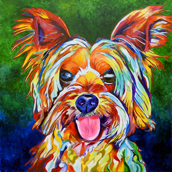 Snail Candy   Snail candy Art Studio   painting by Tif Choate, 'Rocco' Dog Painting   Art Print of Dog
