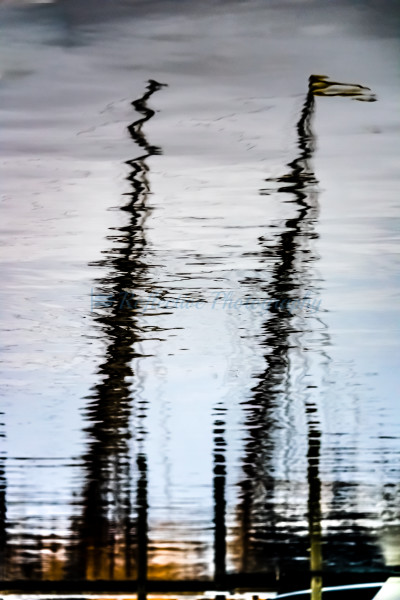Sheltered. Fine Art Photograph of Masts Reflected in Water
