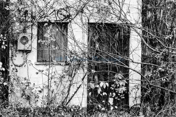 Forgotten. Fine Art Black & White Photograph by M. F. Gladu. Queen Annes County, MD