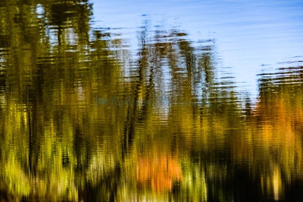 Autumn's Call. Fine Art Photograph by M. F. Gladu. Kent County, MD