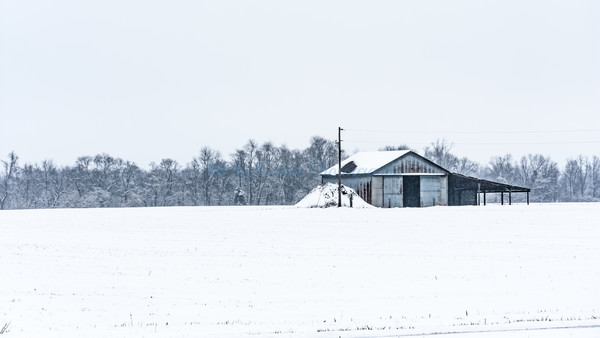First Fall. Fine Art Photograph by M F Gladu. Kent County MD