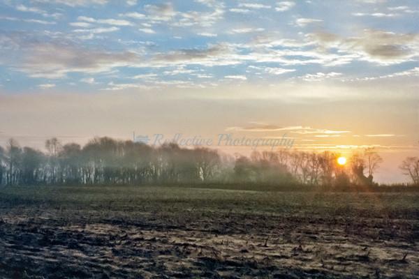 Harvest Time. Fine Art Photograph by M F Gladu. Kent County MD