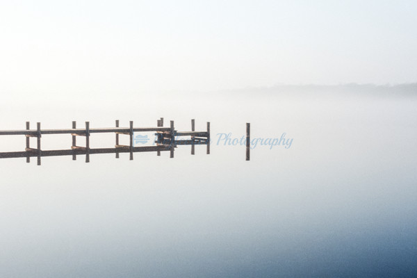 Shades of White. Fine Art Photography by M. F. Gladu. Queen Annes County, MD