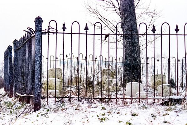 Winter's End. Fine Art Photograph by M F Gladu. Kent County MD