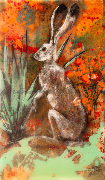 Hare by yucca in California Poppies