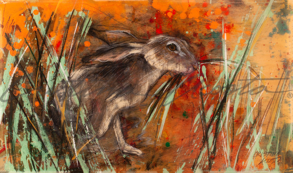 California Poppy series Jackrabbit eating grass art