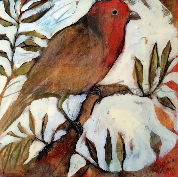 male finch facing right wildlife art by Cristina Acosta