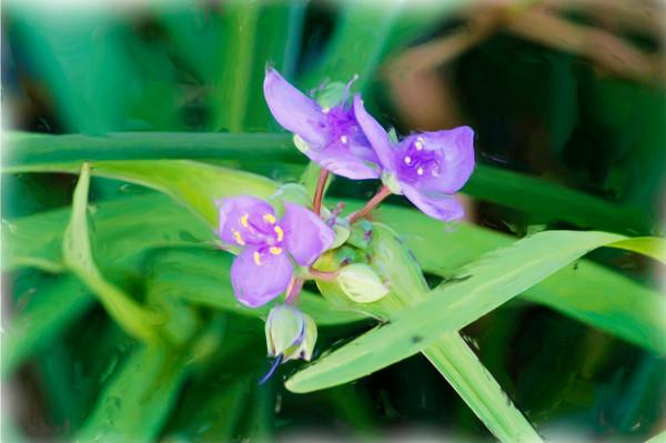 PurpleFlower-Painting-ofu8tz.jpg