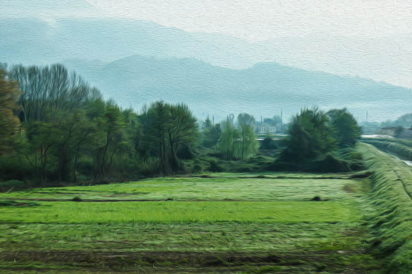 Countryside 13