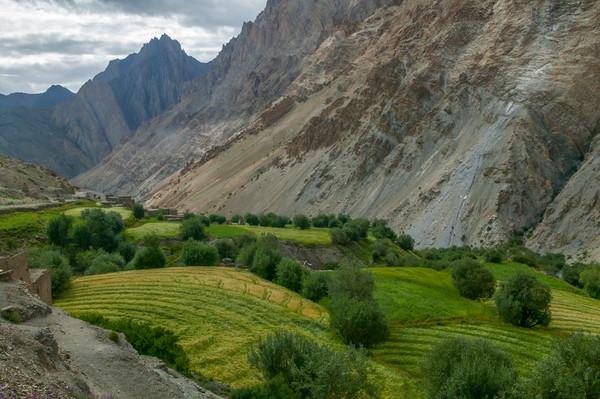 I Am Fertile Soil-Himalayan Village