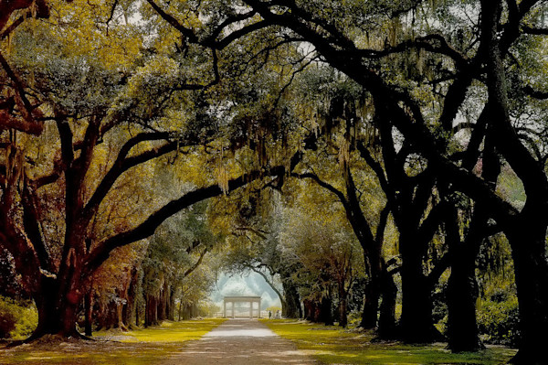 Oak Alley Plantation Louisiana.