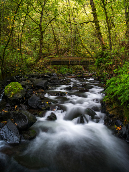 Bridal Veil Creek in the Columbia River Gorge
