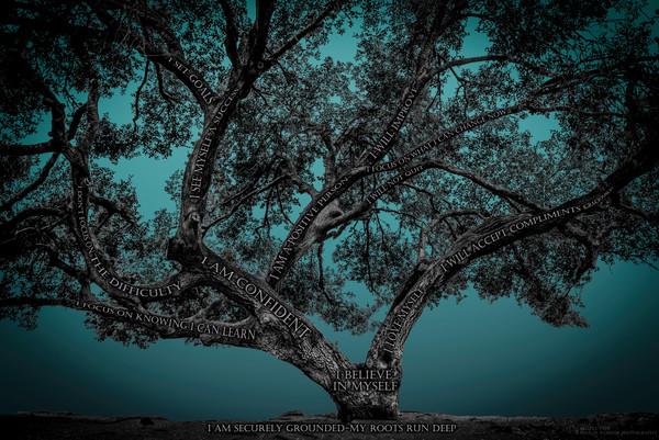 Believe Tree - Teal Photograph For Sale as Fine Art