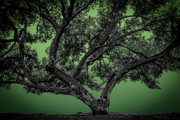 Believe Tree - Green Photograph For Sale as Fine Art