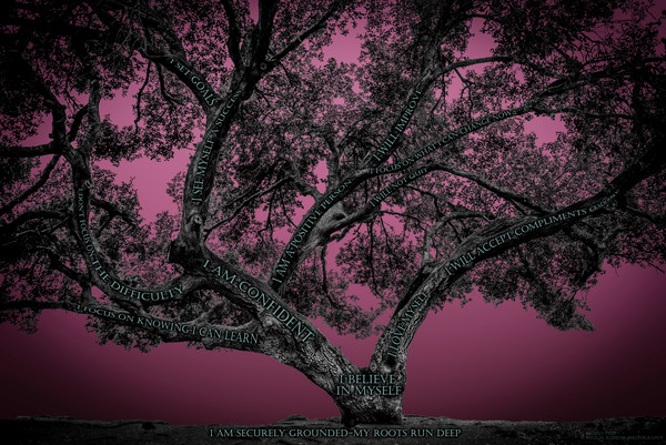 Believe Tree - Pink Photograph For Sale as Fine Art