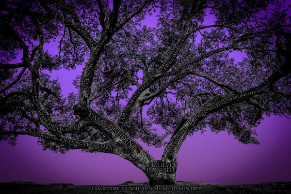 Believe Tree - Purple Photograph For Sale as Fine Art