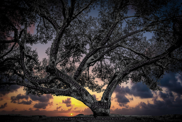 Believe Tree - Black's Beach Sunset Photograph For Sale as Fine Art