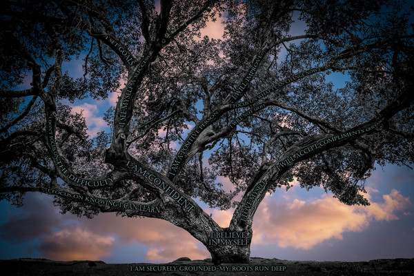 Believe Tree - Cloud Sunset Photograph For Sale as Fine Art